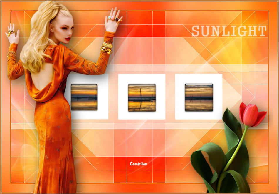 Sunlight - Estela Fonseca