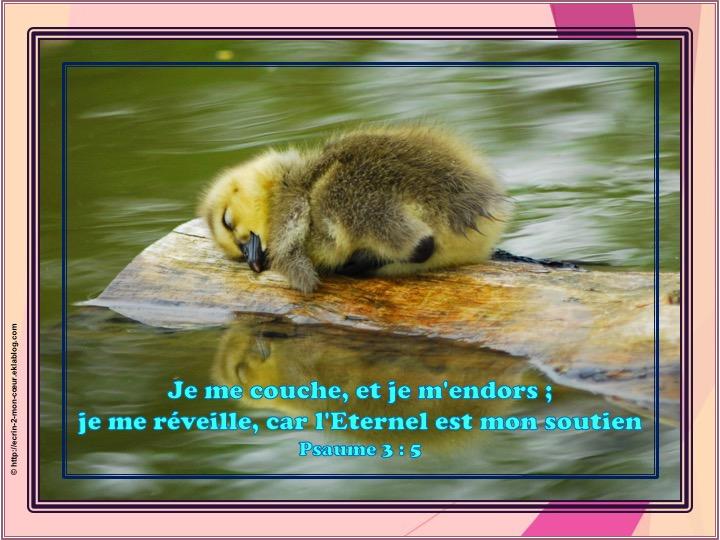 L'Eternel est mon soutien - Psaumes 3 : 5