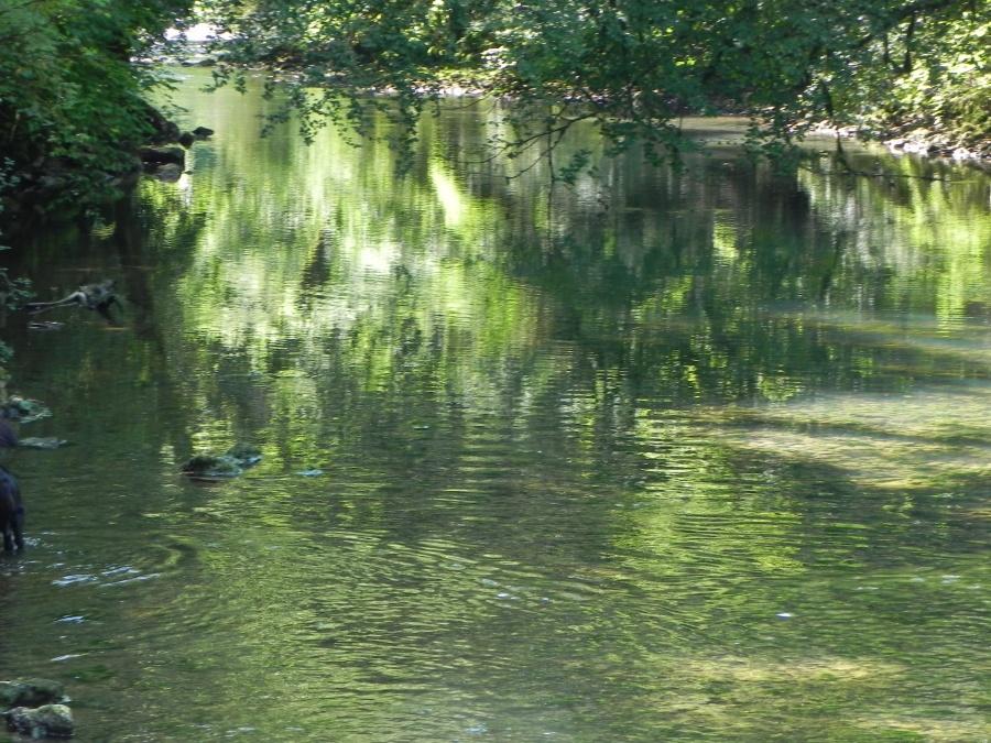 La cascade de la source du Lison