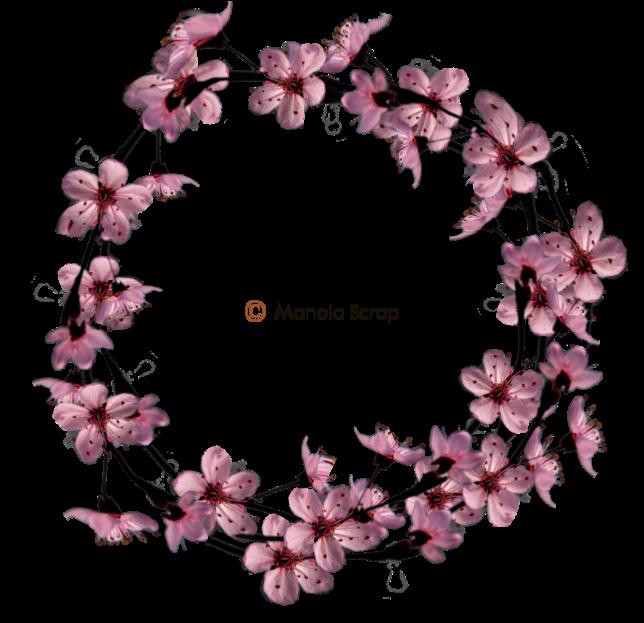 Cadres de fleurs page 1