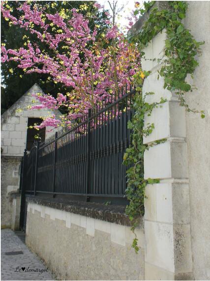 Loches / Flânerie dans les ruelles