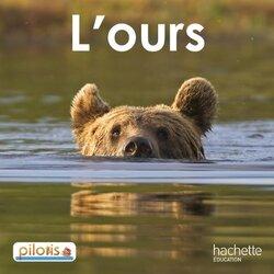 L'ours, les étiquettes... (Pilotis)