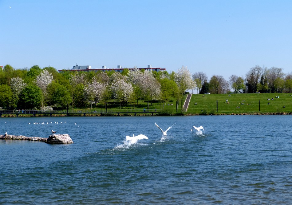 Amiens, son parc, son ☼