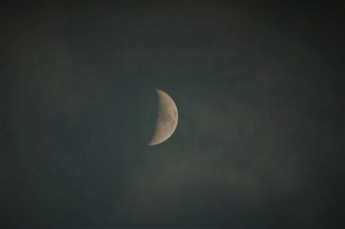 Palette de lunes ou une semaine du règne de la belle Séléné