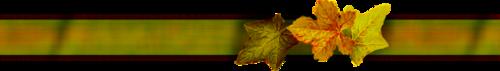 séparateur d'automne