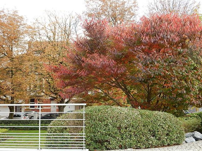 Parc ING Etterbeek