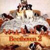 Beethoven 2  (1993).jpg