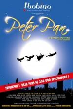 Peter Pan : un spectacle pour enfants rempli de magie