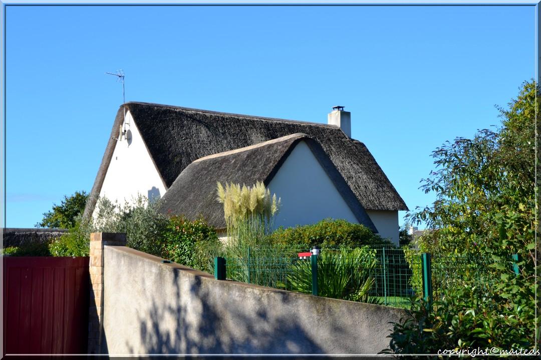Chaumière - Khérinet - Loire-Atlantique - 5-10-2013