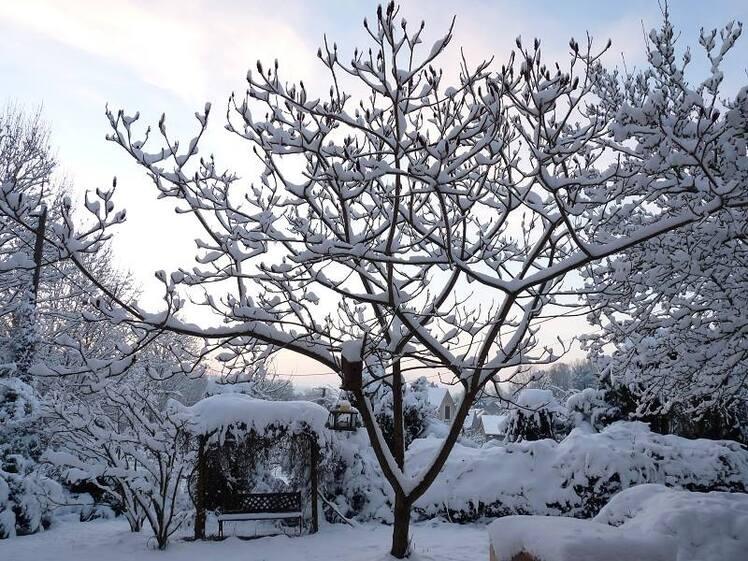 Printemps et hiver
