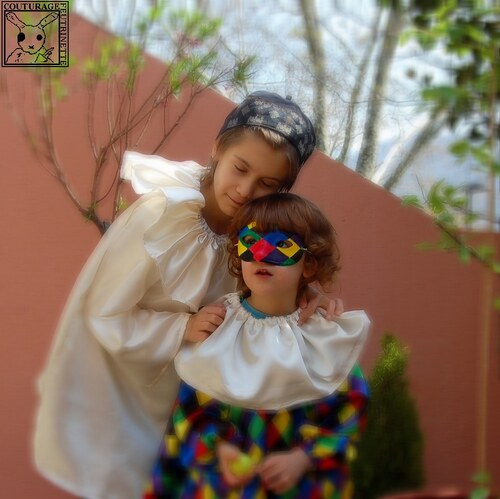costume, carnaval, arlequin, colombine