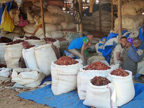 visite au petit marché local de Bahri Dar