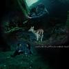 Twilight-edward-and-bella-forever-7028720-1024-768.jpg