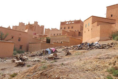 16 avril - Ouarzazate - N'Kob