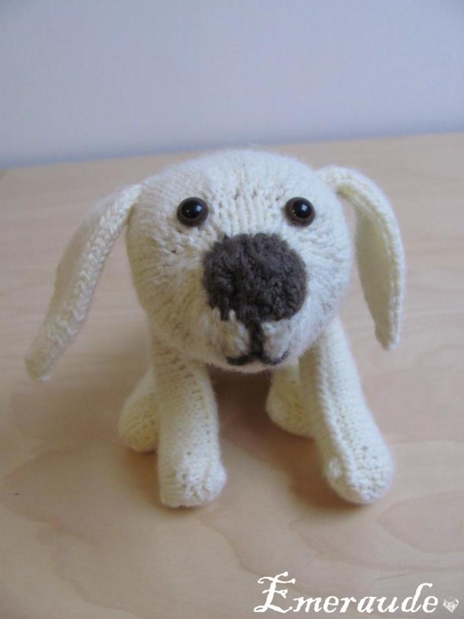 Tricot: doudou, un jeune labrador