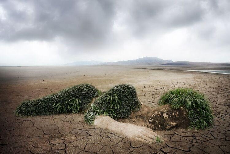 Nos civilisations se dirigent vers un effondrement irréversible des écosystèmes terrestres