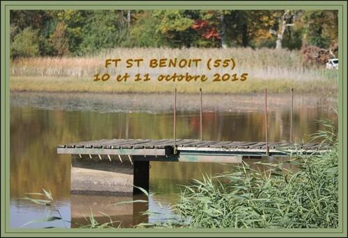 Field trial Saint Benoit en Woeuvre (55)