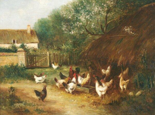 Mardi - L'artiste de la semaine : Les poules de Edmond Van Copenolle