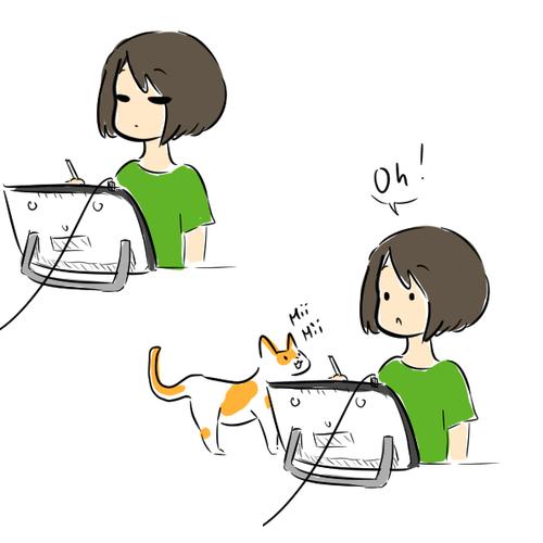 Un chat mignon.Oui
