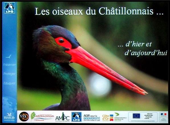 Une conférence passionnante sur les oiseaux du Châtillonnais d'hier et d'aujourd'hui....