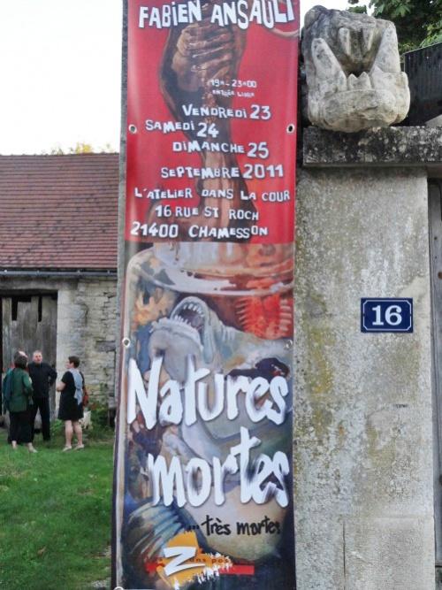 """""""Natures mortes, bien mortes"""" une nouvelle exposition de Fabien Ansault..."""