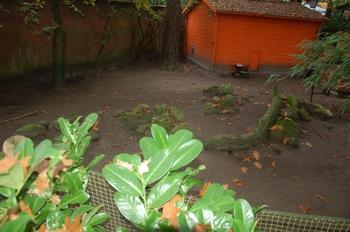 dierenpark amersfoort d50 2011 112