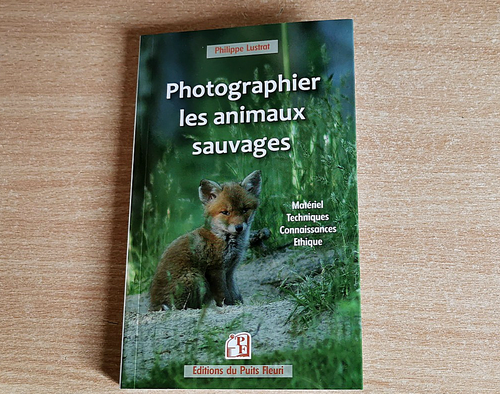Photographier les animaux sauvages !