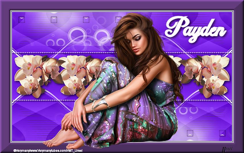 Payden