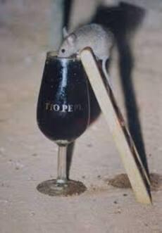 66- La souris buveuse de vin