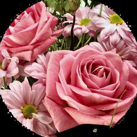 Virág  002