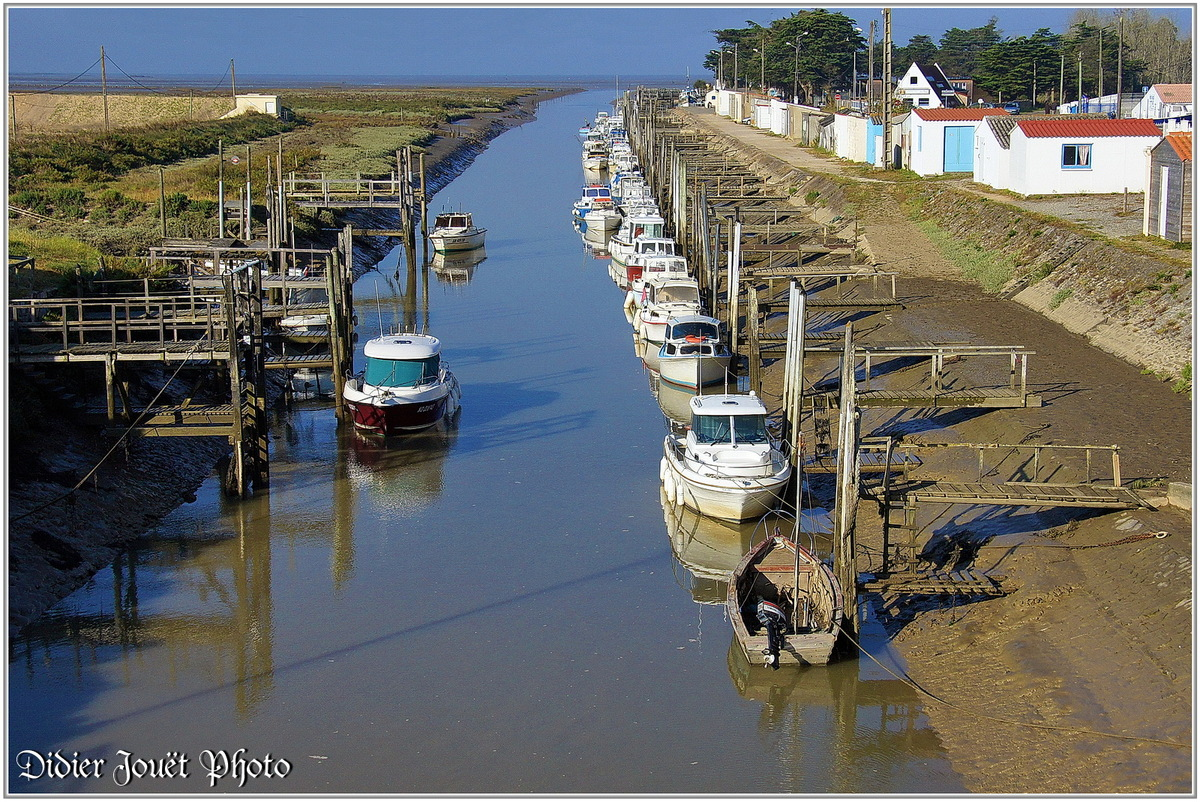 (85) Vendée - Bouin (1) - Port du Collet
