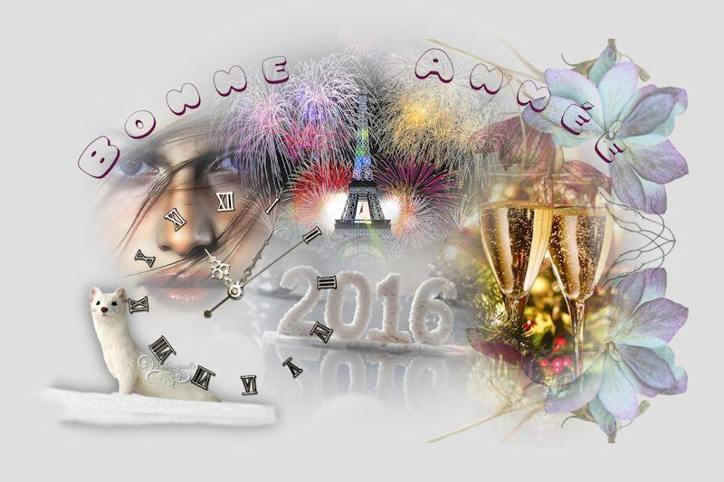 Bonne et Heureuse année 2016