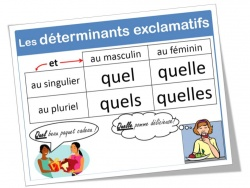affichages en maîtrise de la langue