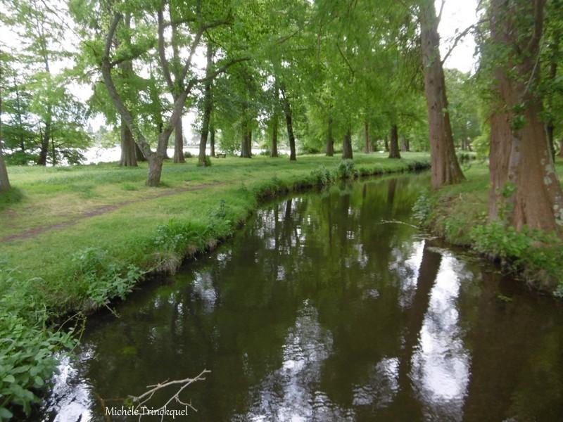 Une balade à la Pointe des Vergnes à SOUSTONS (40), le 25 mai (suite)....