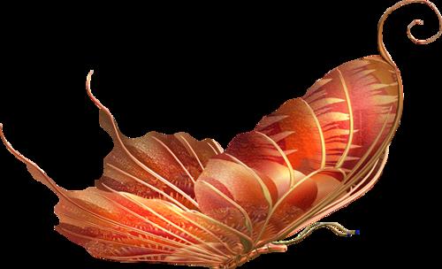 Papillons Série 3