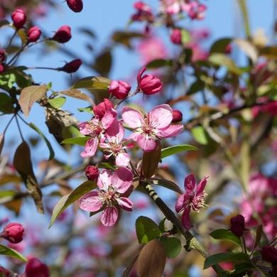 Arrêt sur images d'un mois d'avril qui se prend pour l'été...