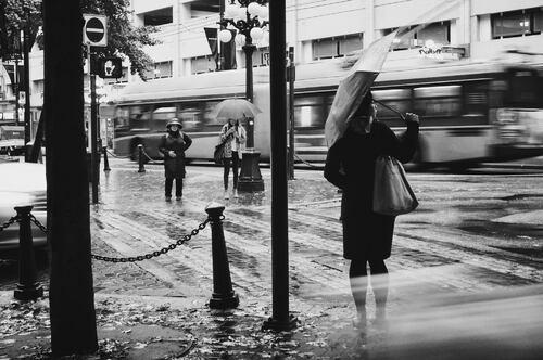 08 - Photos et parapluies