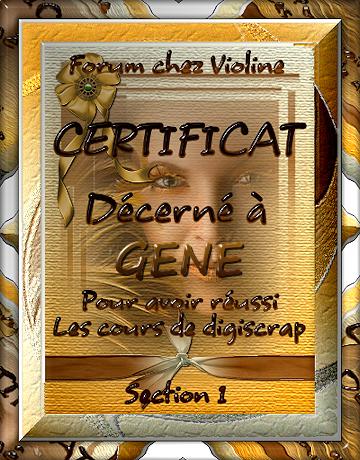Psp Chez Violine
