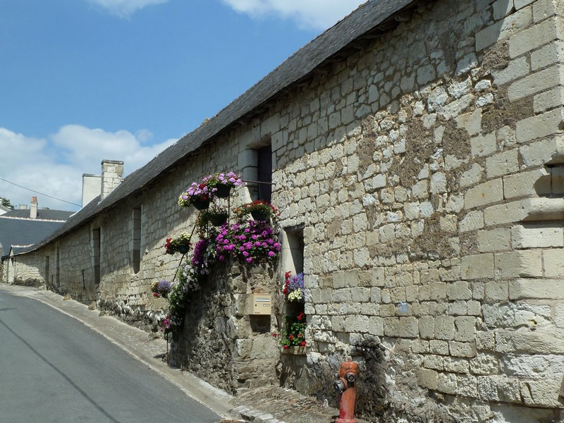 Candes St Martin (37)