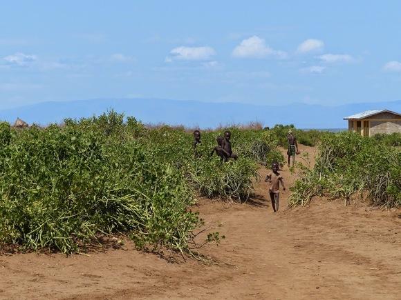 une visite à l'ethnie des Dassanetch au bord de l'Omo