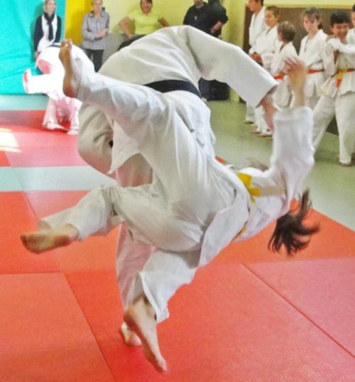 -Le Judo-Club Châtillonnais