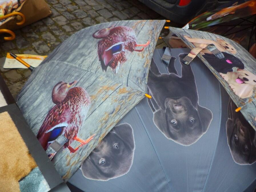 j'ai pensé à vous qui aimez les beaux parapluies