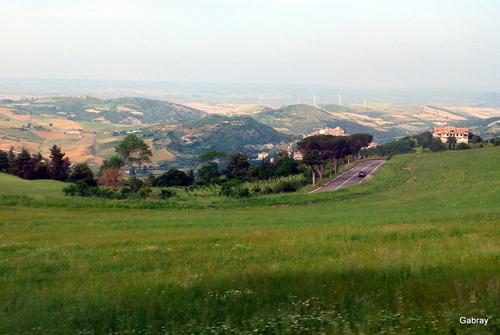 Les Pouilles: brebis dans le paysage...