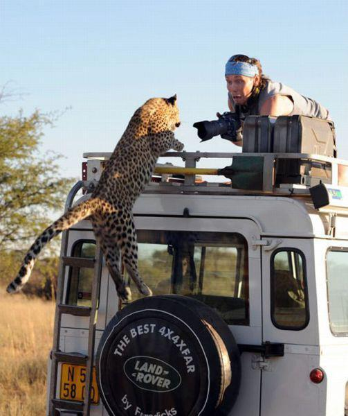 Photographe-et-leopard.jpg