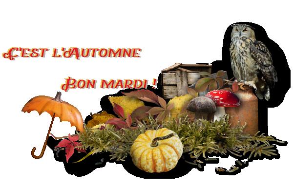 """Résultat de recherche d'images pour """"bon mardi automne"""""""