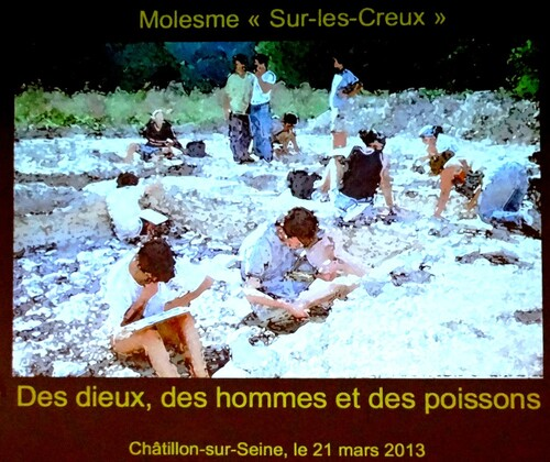 """Les fouilles archéologiques de """"Molesme sur les creux"""""""