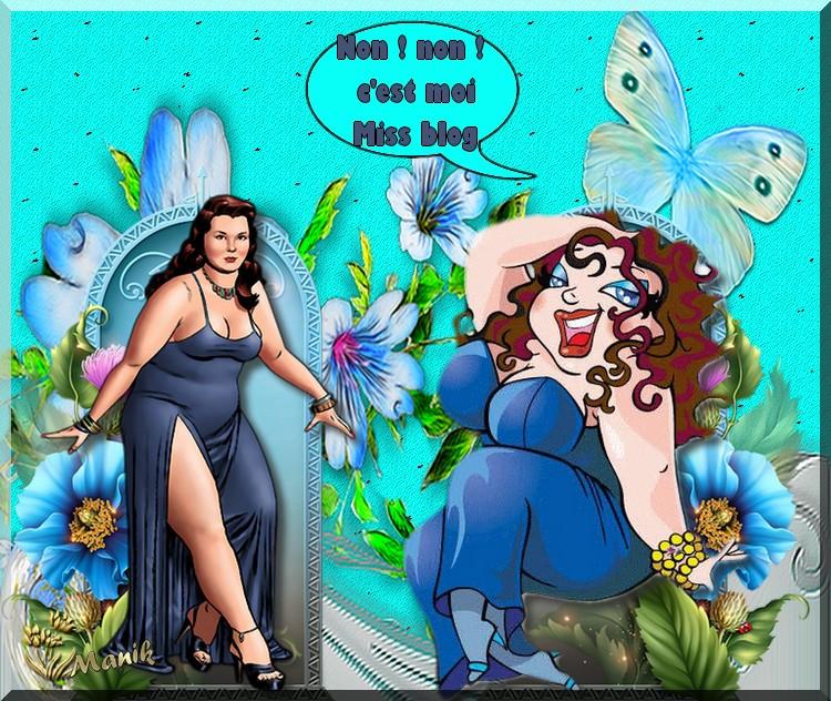 Défi Lilimaya ( Je suis miss blog) défi humour !