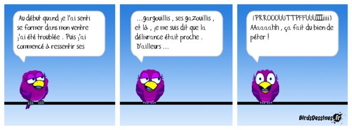 ♥Phares du Finistère♥