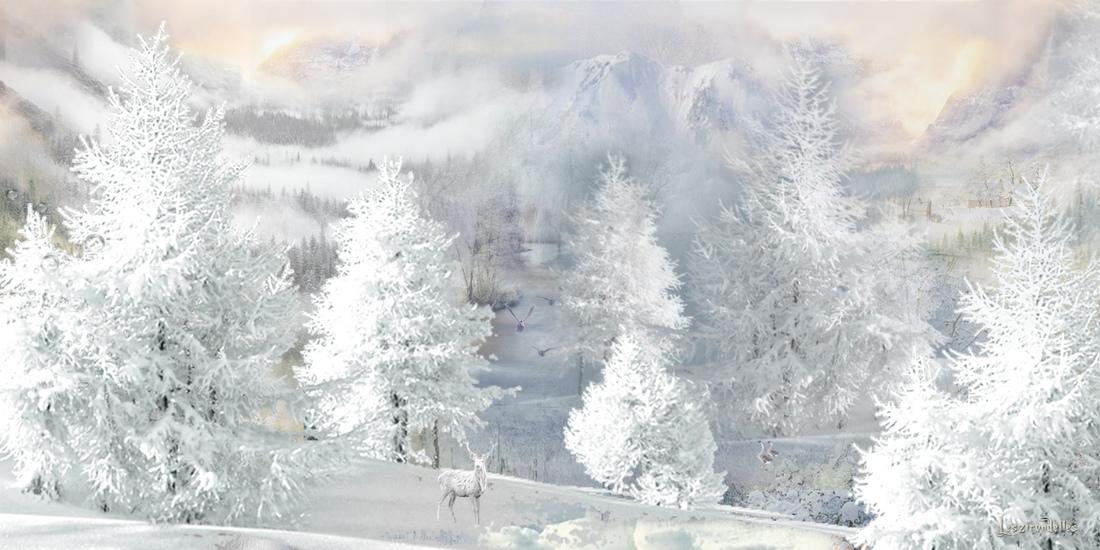 Fond hiver paysage blanc