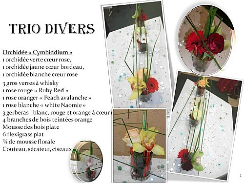 2012 11 27 trio divers (1)